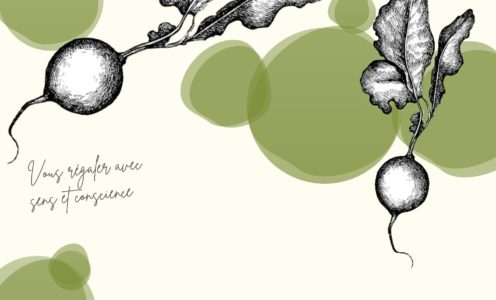 «Le radis vert»